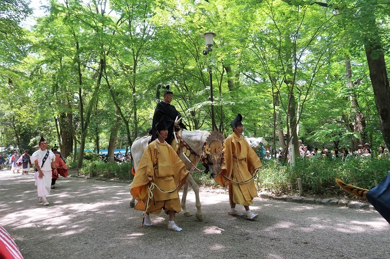 葵祭とラリー_f0076731_07234946.jpg