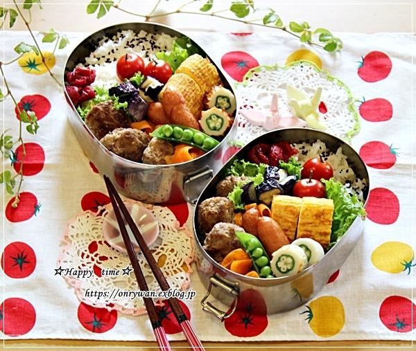 ハンバーグ弁当と今夜のおうちごはん♪_f0348032_17265206.jpg