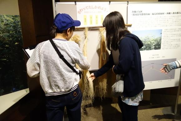 学生と訪ねる旅開催に向けて~奥会津方面の視察 vol.2~_f0238767_15042179.jpg