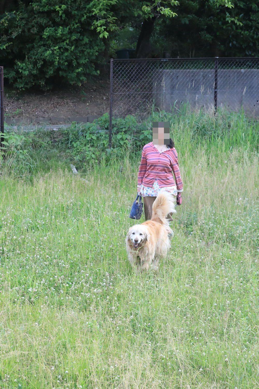 三人で近所の公園♪_b0275998_10253402.jpg