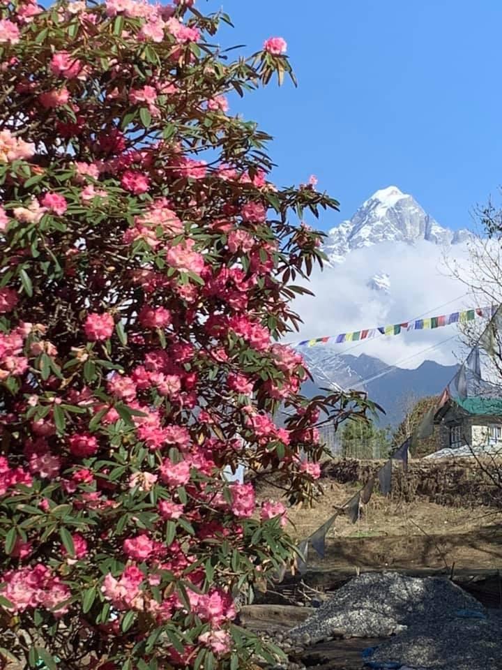 """2019年5月 『ヒマラヤピークトレッキング 1.アプローチ』May 2019 \""""Himalaya Peak Trekking 1.Approach\""""_c0219616_11573433.jpg"""