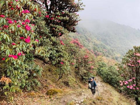 """2019年5月 『ヒマラヤピークトレッキング 1.アプローチ』May 2019 \""""Himalaya Peak Trekking 1.Approach\""""_c0219616_12070102.jpg"""