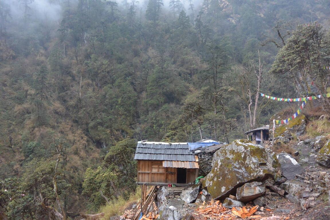"""2019年5月 『ヒマラヤピークトレッキング 1.アプローチ』May 2019 \""""Himalaya Peak Trekking 1.Approach\""""_c0219616_12144390.jpg"""
