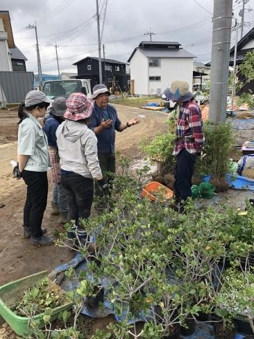 里山モデルハウス植栽工事_a0059217_23262606.jpg