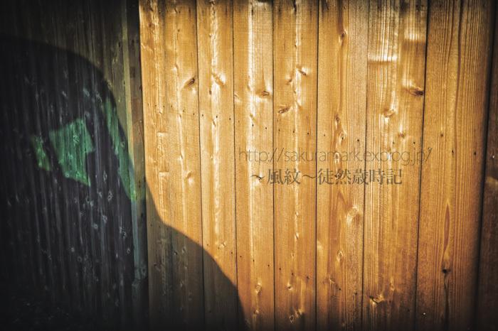 板塀にうつりこむ影。_f0235723_19081888.jpg