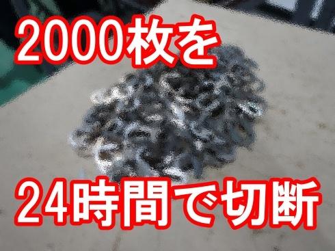 2000枚の大量特急注文_d0085634_15585860.jpg