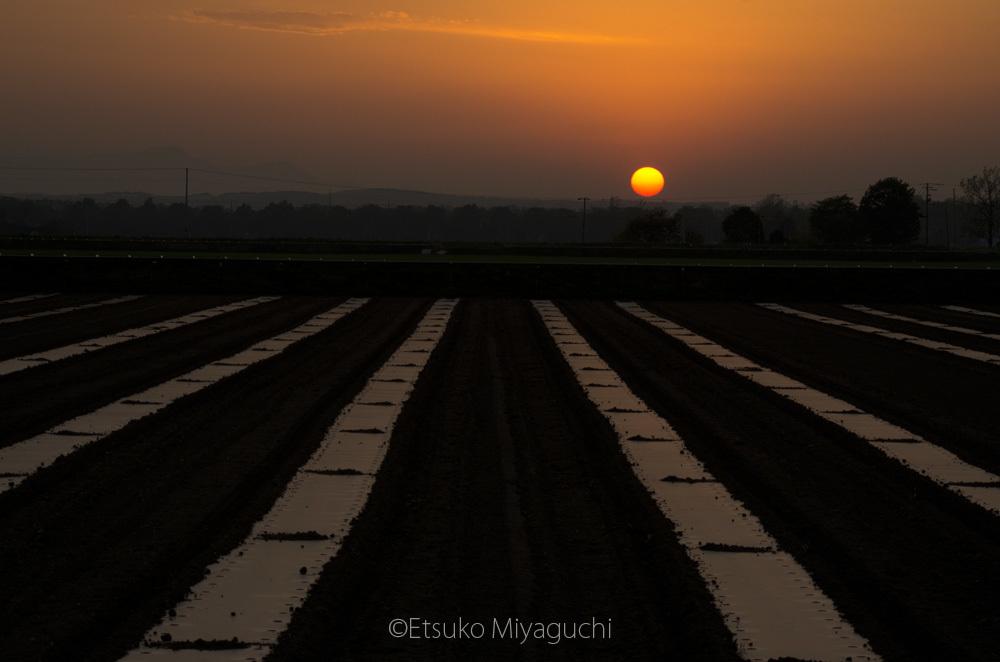 夕陽が沈む頃_f0152939_10131093.jpg