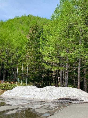 大雪渓で滑ってきました♪_e0248949_02431758.jpg