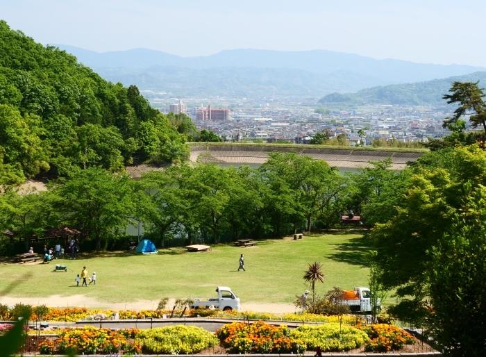 和歌山県植物公園緑花センター  2019-06-03 00:00   _b0093754_21175989.jpg