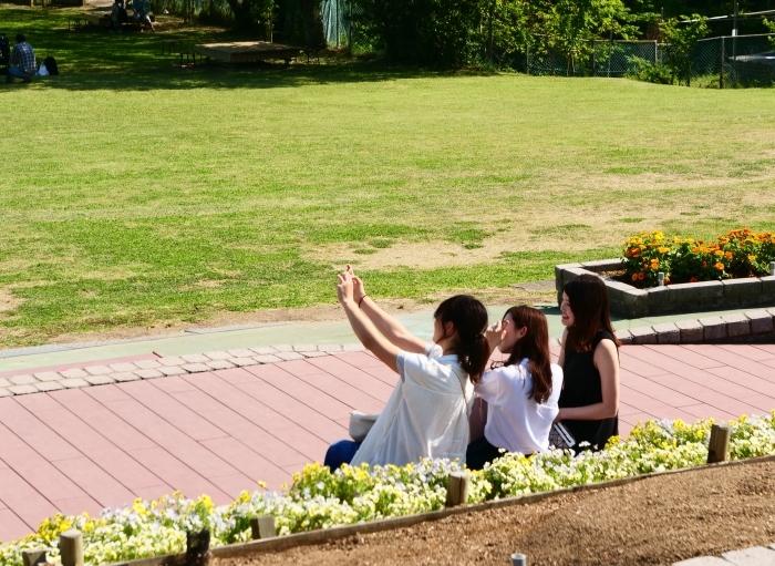 和歌山県植物公園緑花センター  2019-06-03 00:00   _b0093754_21182296.jpg