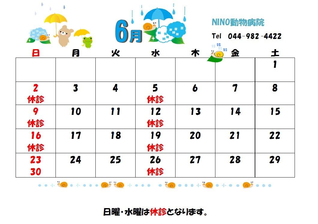 6月の診療日のお知らせ☆_e0288670_18341856.jpg