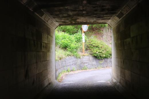 イワサキ走行会レポートin阿讃サーキット_b0163075_13524224.jpg