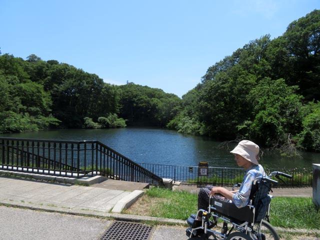 長池公園へ_e0133780_12463282.jpg