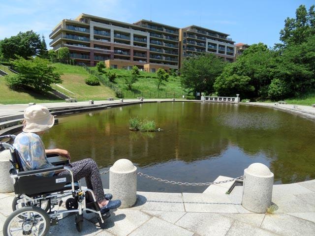 長池公園へ_e0133780_14522606.jpg