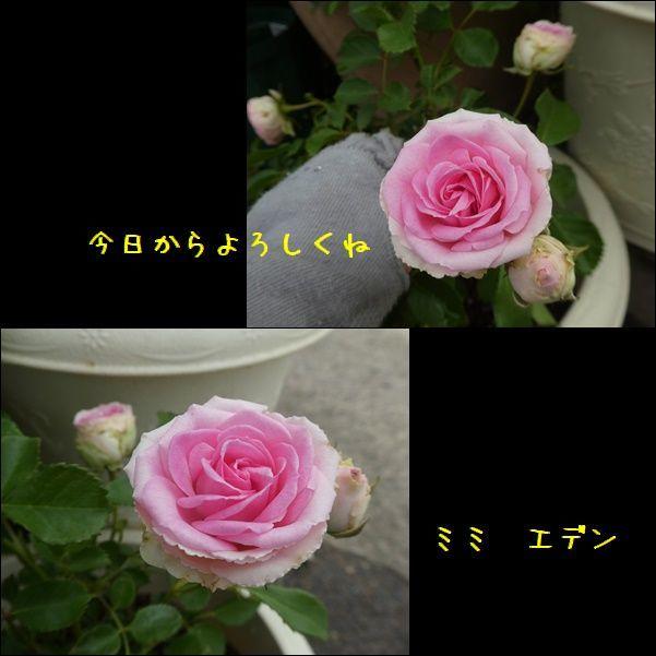 e0234881_21301766.jpg