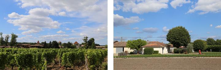 ワインと美食の旅、ボルドーとバスク地方_c0313595_21282201.jpg