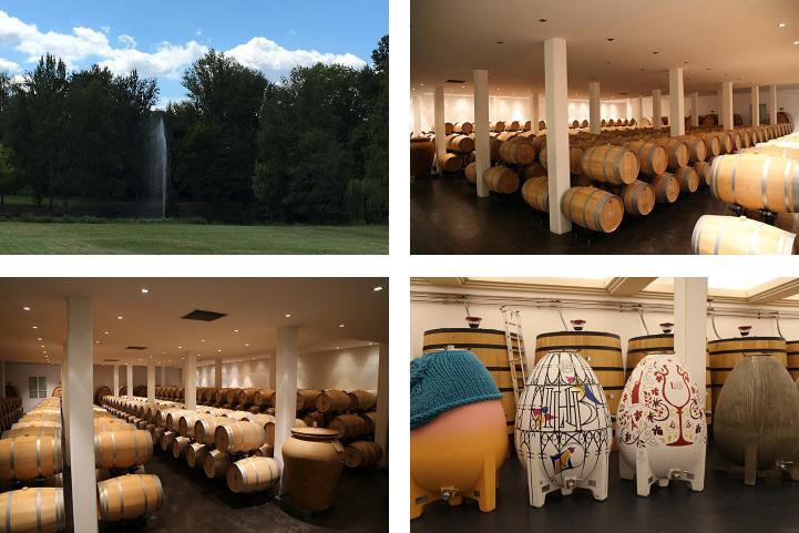 ワインと美食の旅、ボルドーとバスク地方_c0313595_21325296.jpg