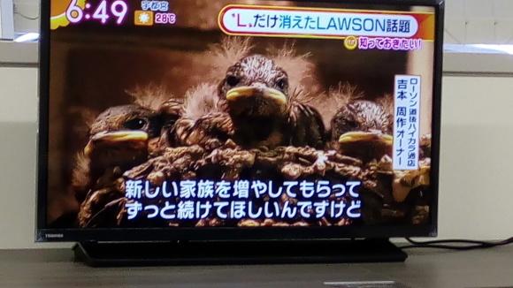 ツバメの巣作りを見て_b0217741_17072752.jpg
