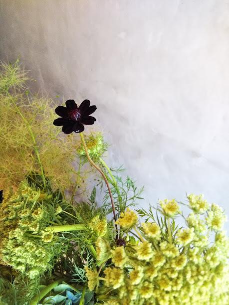 念願かなって【blossom Shima】さんに行って来ました(*≧▽≦*)_f0340942_22254395.jpg