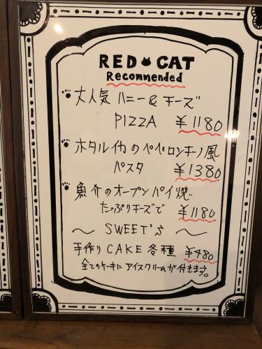 赤いトタン屋根の猫@6_e0292546_22041084.jpg