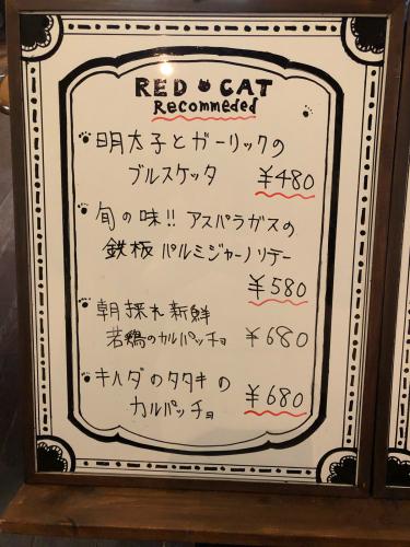 赤いトタン屋根の猫@6_e0292546_22041271.jpg
