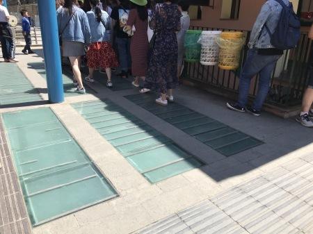 今日のマナローラ、猫たちの井戸端会議_a0136671_04293179.jpg