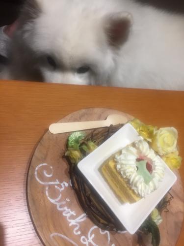2019年6月滋賀旅行① ついに10歳。_e0052736_23081912.jpg