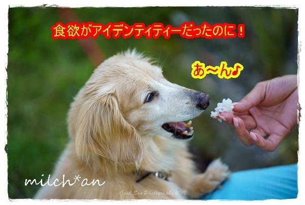 b0115642_16100233.jpg