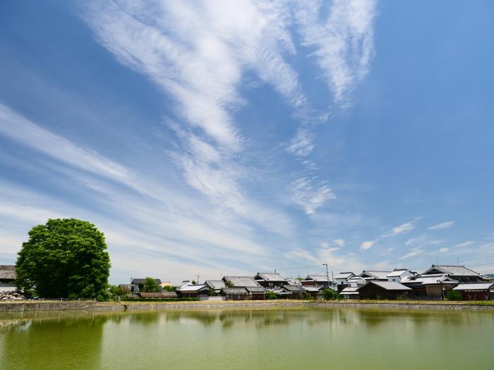 奈良・薬師寺  2019-06-05 00:00   _b0093754_23192652.jpg