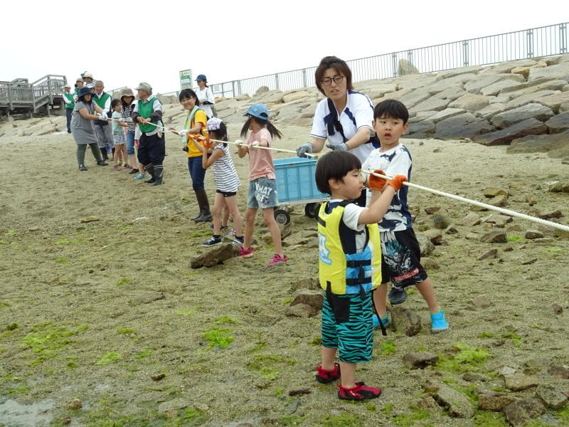第12回「大阪湾生き物一斉調査」・・・せんなん里海公園_c0108460_20572132.jpg