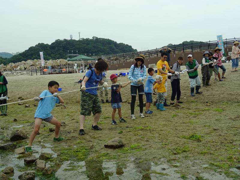 第12回「大阪湾生き物一斉調査」・・・せんなん里海公園_c0108460_20572298.jpg