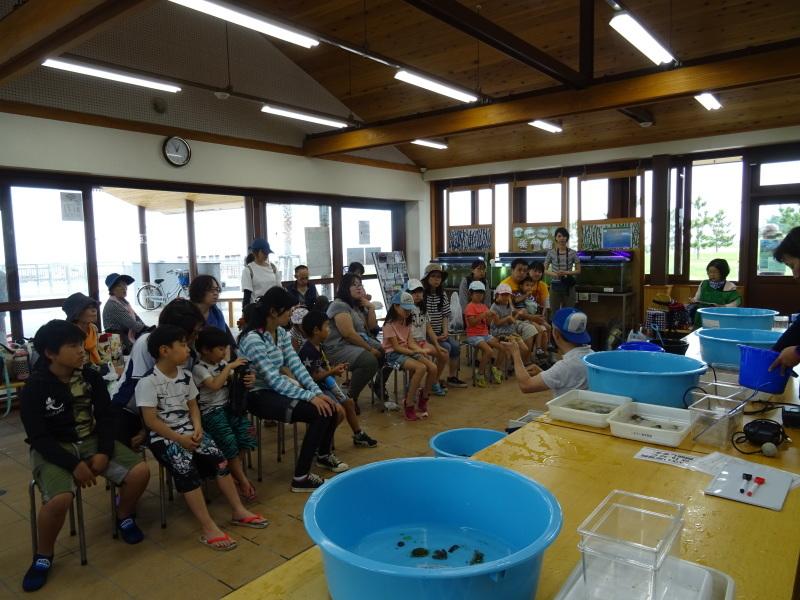 第12回「大阪湾生き物一斉調査」・・・せんなん里海公園_c0108460_21032116.jpg
