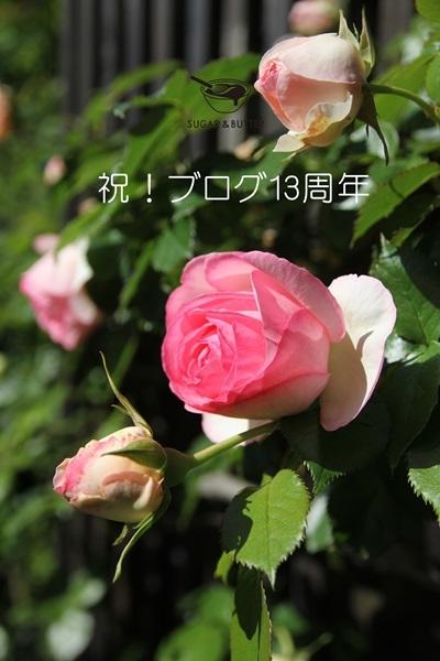 b0105661_22134387.jpg