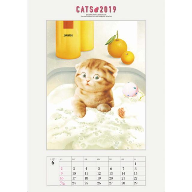 「 6月の 犬さん・猫さん 」_c0328479_17252430.jpg