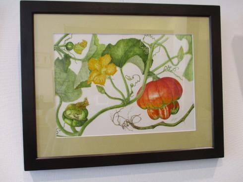 植物画展がはじまりました_e0190287_12150424.jpg