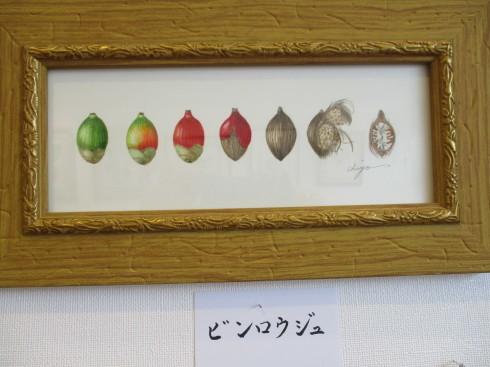 植物画展がはじまりました_e0190287_12153355.jpg