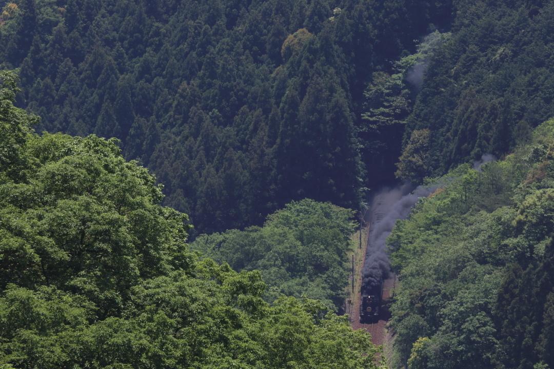 大引越トンネルから田代トンネルへ - 2019年初夏・山口線 -_b0190710_21293712.jpg