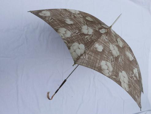 Umbrella_f0144612_10451259.jpg