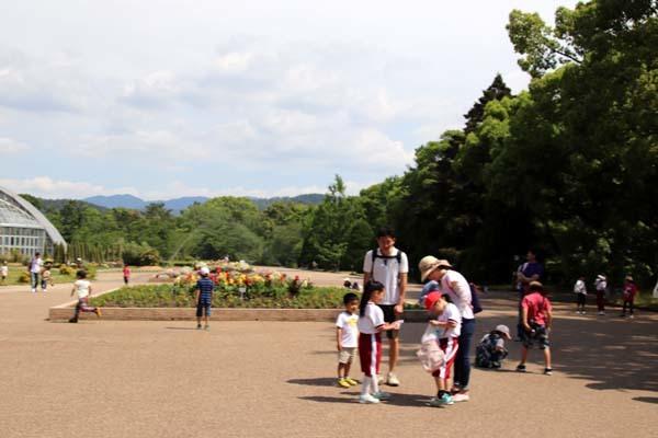 6月の植物園2 菖蒲園とアジサイ園_e0048413_21132617.jpg
