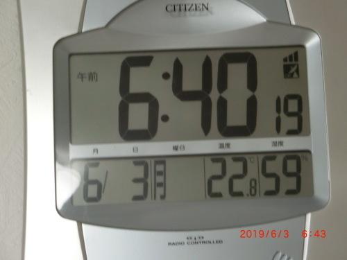 今日も暖かい朝です_c0347126_09153122.jpg