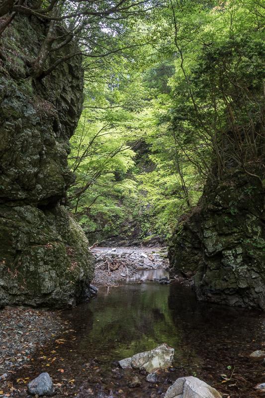 台高・中奥川 赤倉谷ジョウカケ谷_e0178131_00535062.jpg