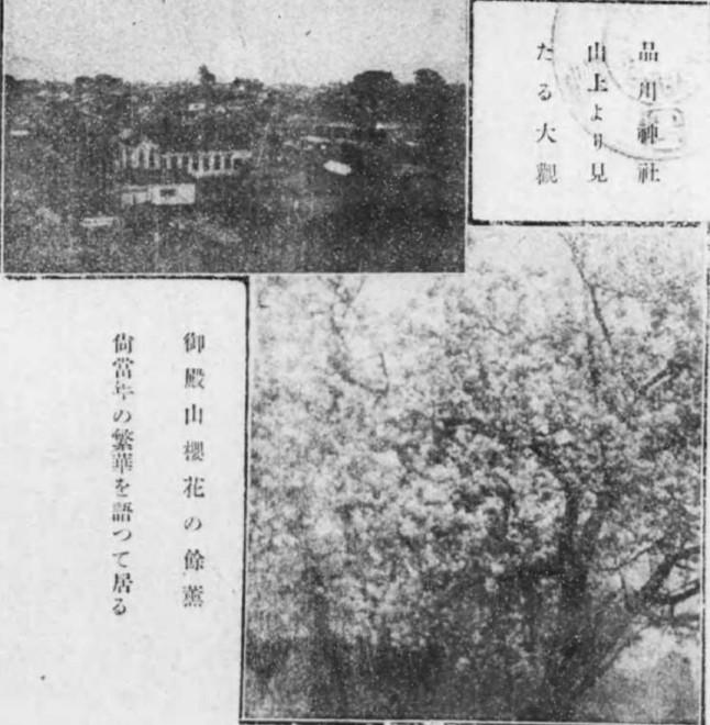 メガネ出っ歯のルーツ(資料追加)、御殿山の桜写真は実在するか(写真情報追加)、ネットニュース比較、体調不良のためあまりなんにもしなかったです;2019/2/13-19twitterまとめ _b0116271_13053587.jpg