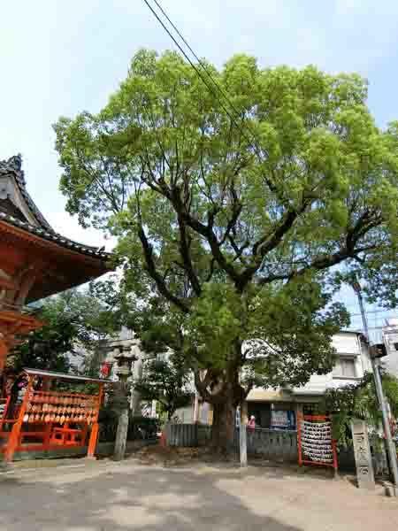菅原神社(北の天神さん)_a0045381_20314346.jpg