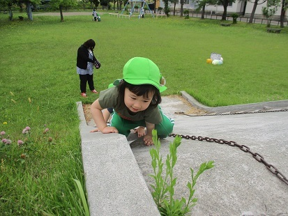 もも組 園外保育_c0212598_16510089.jpg
