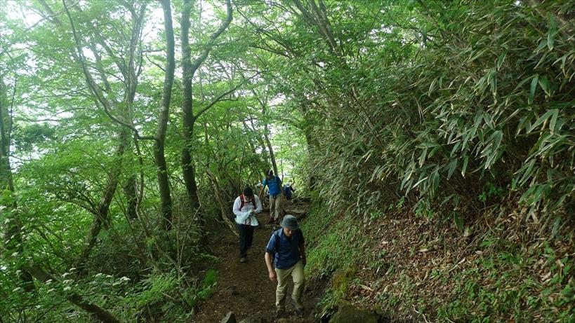カワサキハイキングクラブの活動_d0108817_14350302.jpg