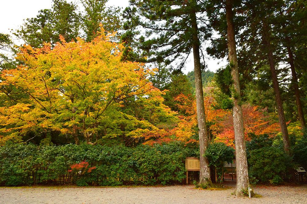 室町時代の庭園が残る多気北畠氏城館跡を訪ねて。<後編> 武家庭園_e0158128_13593346.jpg