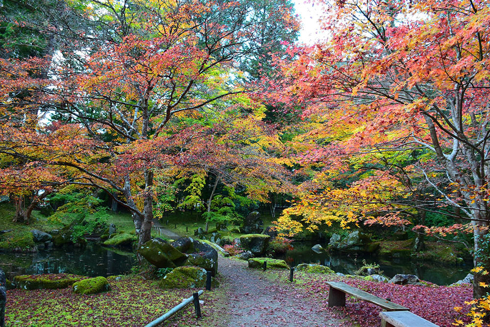 室町時代の庭園が残る多気北畠氏城館跡を訪ねて。<後編> 武家庭園_e0158128_14140569.jpg