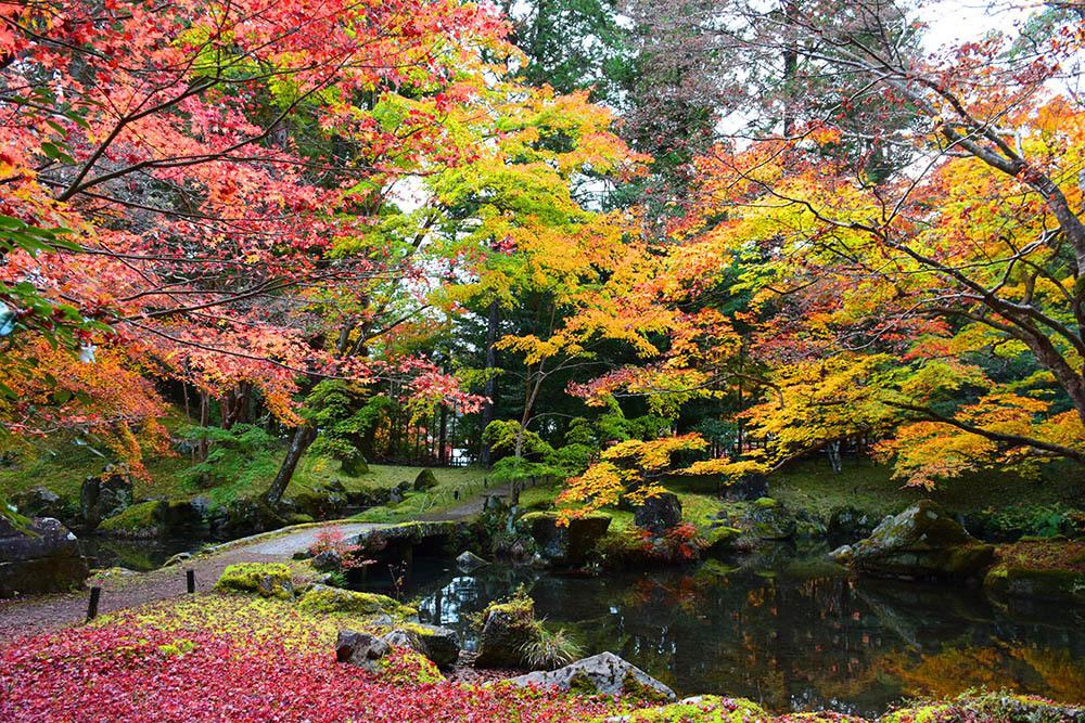 室町時代の庭園が残る多気北畠氏城館跡を訪ねて。<後編> 武家庭園_e0158128_14141072.jpg