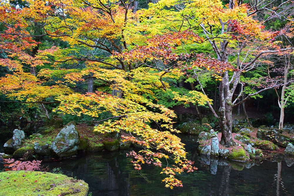 室町時代の庭園が残る多気北畠氏城館跡を訪ねて。<後編> 武家庭園_e0158128_14141426.jpg