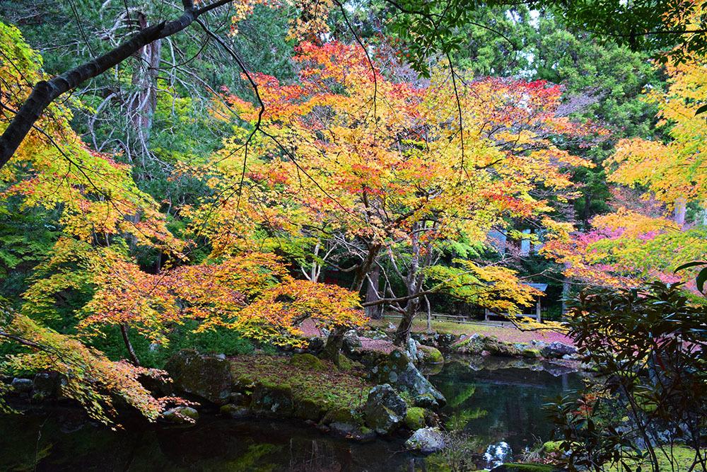 室町時代の庭園が残る多気北畠氏城館跡を訪ねて。<後編> 武家庭園_e0158128_14141700.jpg